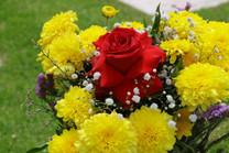 Flores-De-Colores (39).JPG