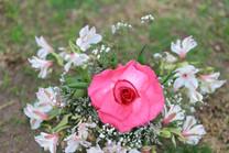 Flores-De-Colores (17).JPG