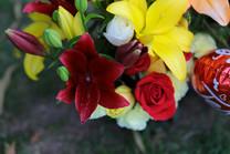 Flores-De-Colores (14).JPG