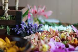 Haku Maui Workshops