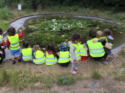 Forest School Pond