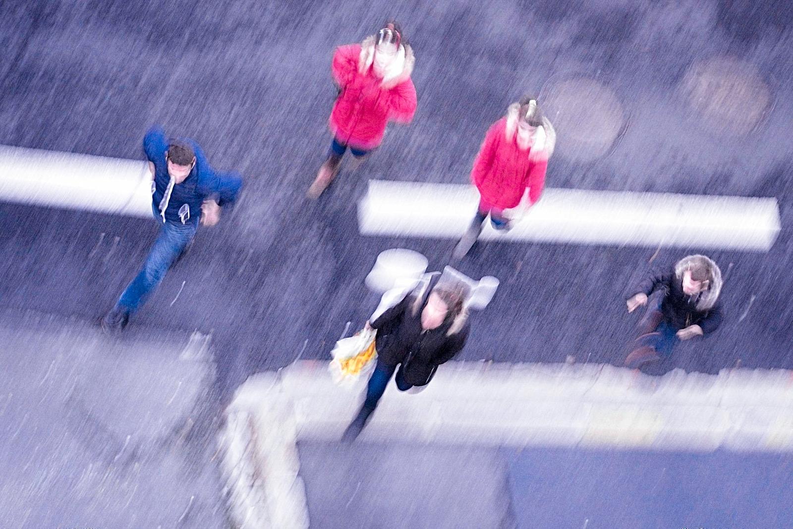 Crossing the Road RSM_0143