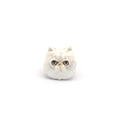 Persian cat CHARM,white