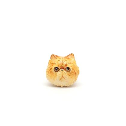 Persian cat CHARM,Yellow