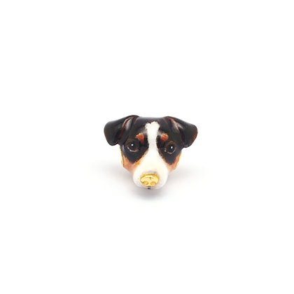 Jack Russell CHARM