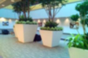 Contact 3 - Lobby.jpg