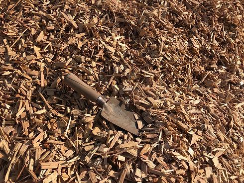 playground chip.jpg