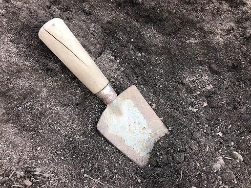 Enriched Garden soil.jpg