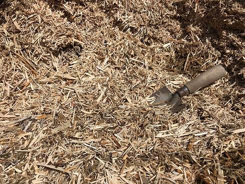 Peeled pine 2.jpg