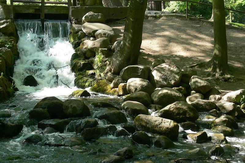Der Park in Danzig Oliva