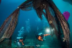 Healthy Seas divers