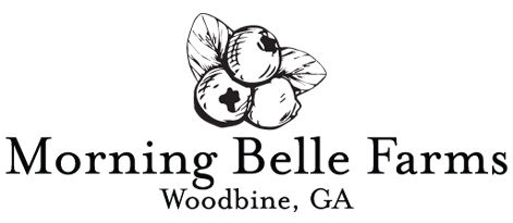 morning_belle_logo_1c.jpg