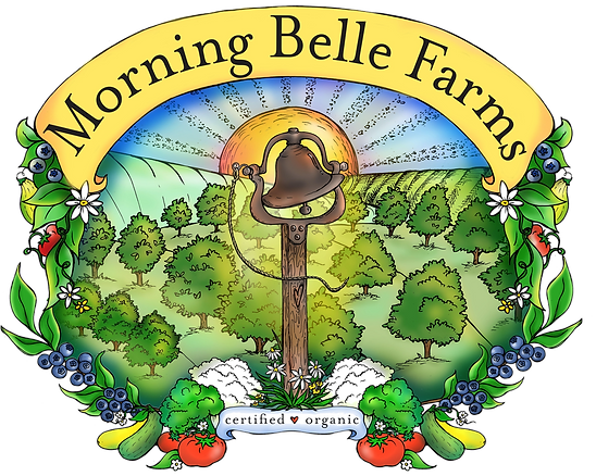 morning_belle_logo_original_HR_edited_ed