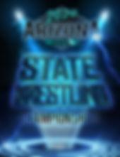 2020 AIA Wrestling.jpg
