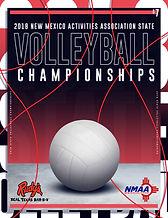 2018 NMAA Volleyball.jpg