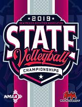 2019 NMAA Volleyball.jpg