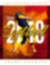 2018 CHSAA Softball.jpg