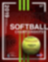 2019 NMAA Softball.jpg