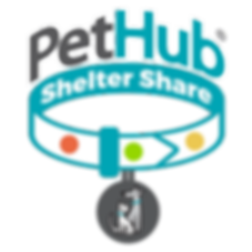 Shelter-Share-2018-1000x1000_840x.png