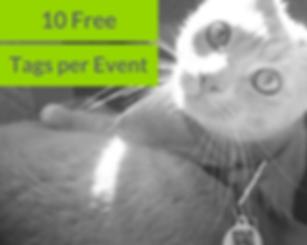 10 free tags per event shelter share.png