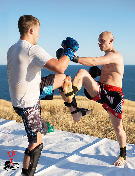 Тайский бокс. Спарринг
