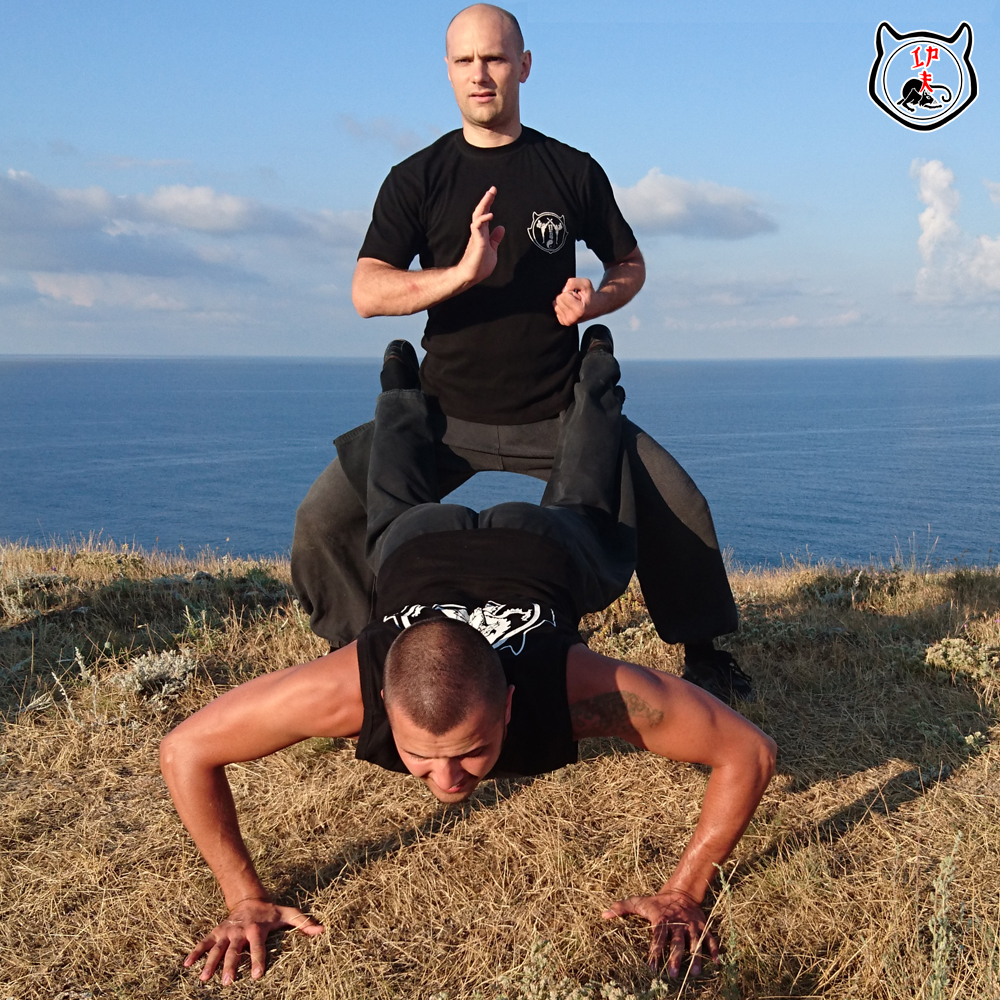 тренировка по кунг-фу