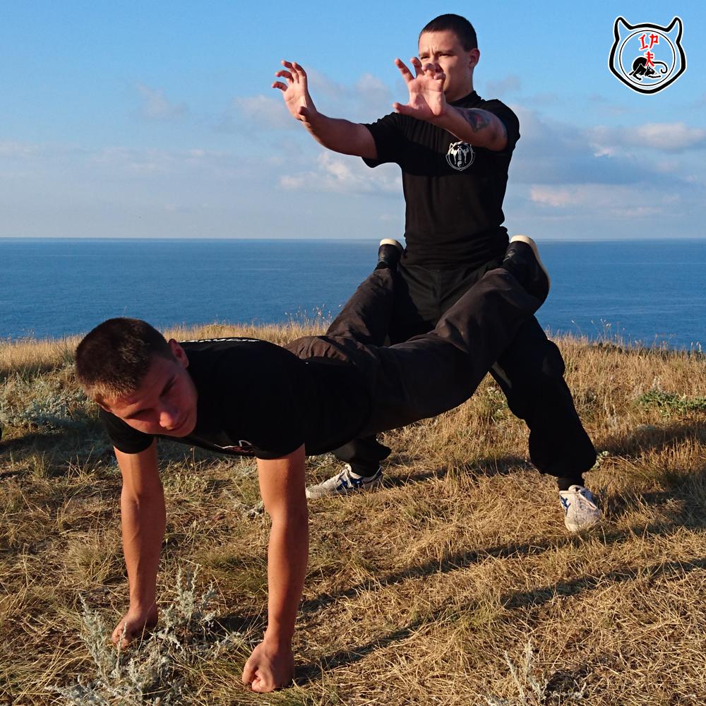 школа боевых искусств в москве