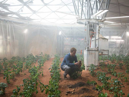 What role will symbiotic bacteria play in plants' growth on Mars?