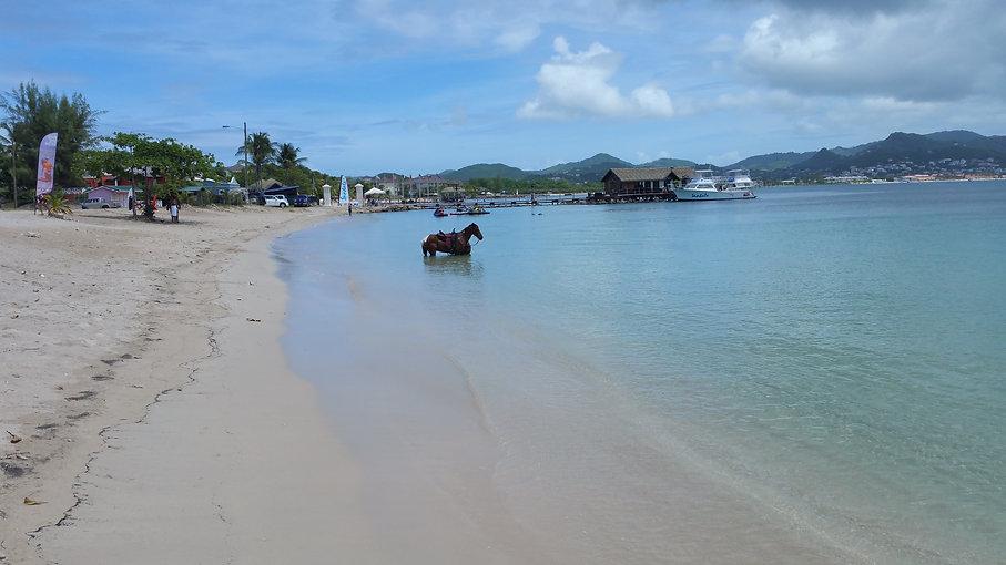 St Lucia for Website.jpg