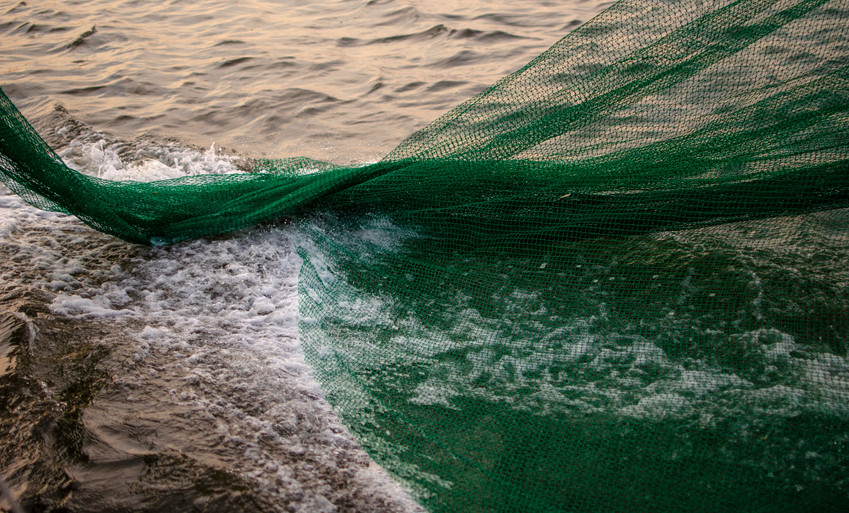Shrimping net