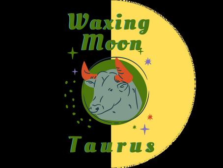 Waxing Moon in Taurus