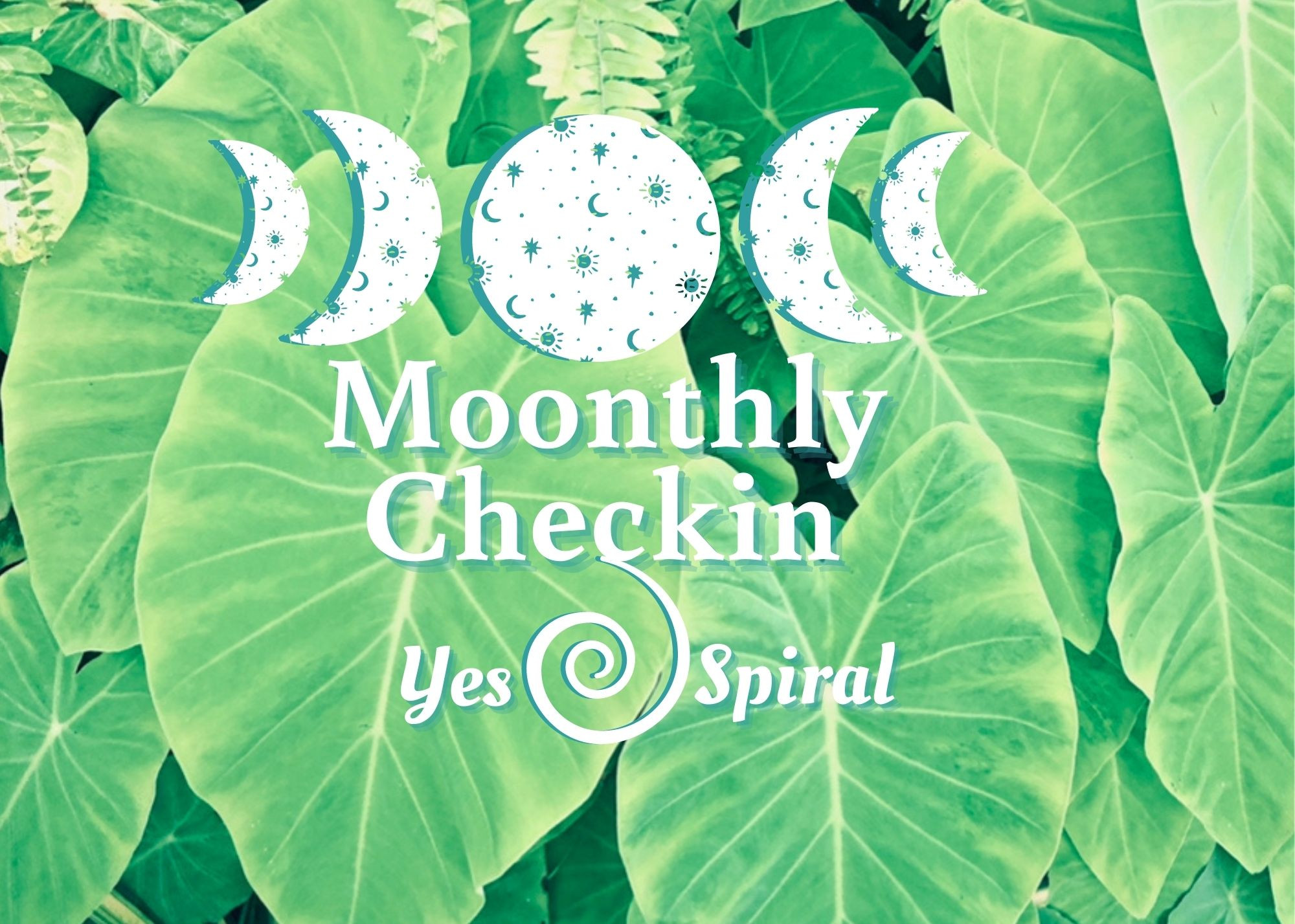 30 Minute Moonthly 1 on 1 Check In
