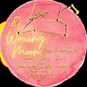 Waxing Moon in Leo