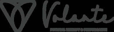 Volante_Logo_Grey.png