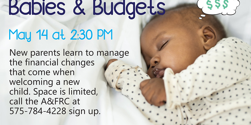 Babies and Budgets