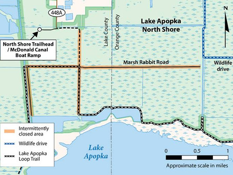 Construction begins on Lake Apopka water storage improvement project