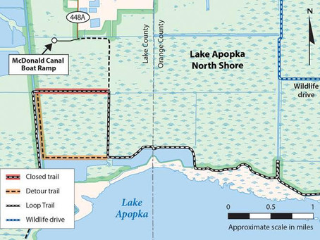 Expect weekday construction detours on Lake Apopka Loop Trail