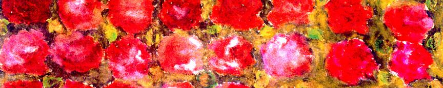 Midnight Roses-02.jpg