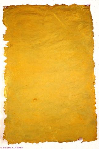 Gold Skin-02.jpg