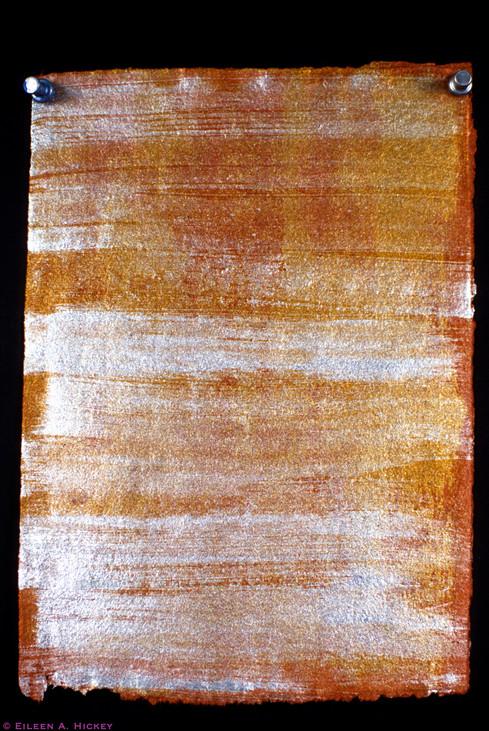 Silver Wood-02.jpg