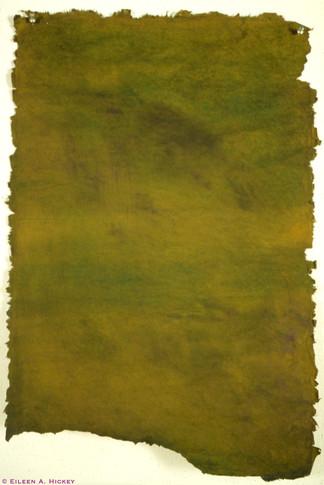 Green Skin-02.jpg