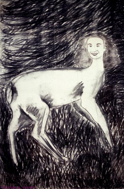 Deer in the Headlights-02.jpg