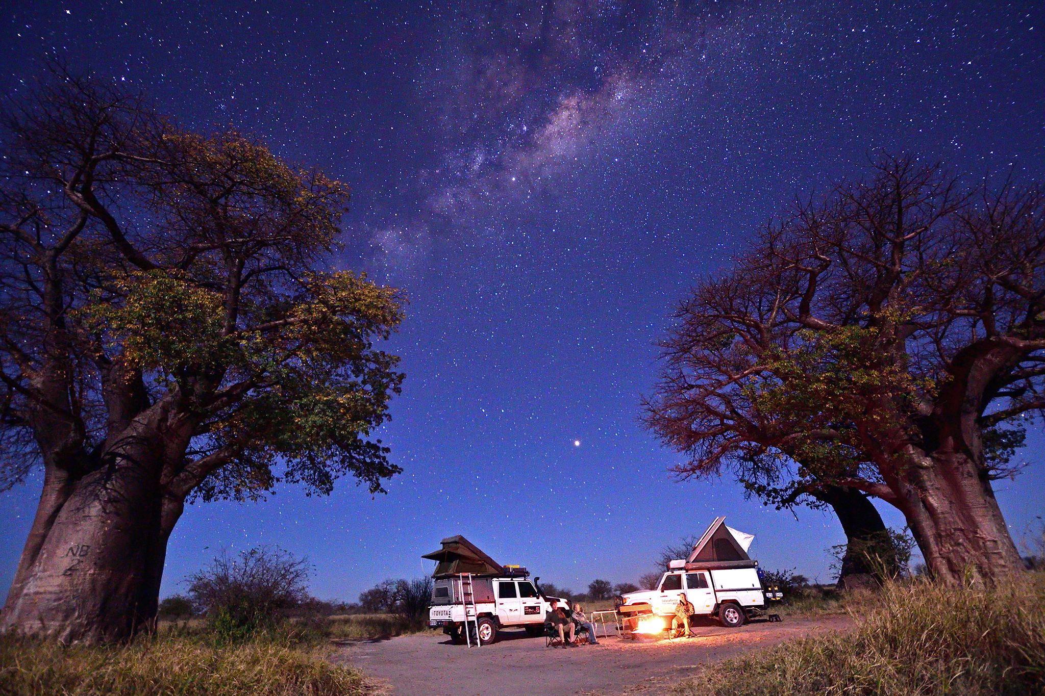 Camping under ancient Baobabs