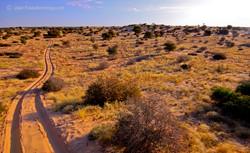 Kalahari 2 Track Trail