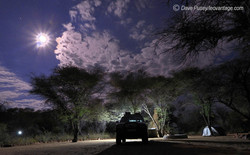Moonlit Acacia Camp