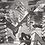 Thumbnail: Flatworms