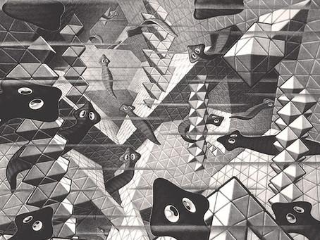 Escher and Flatworms