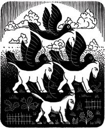 Birds and Ponies