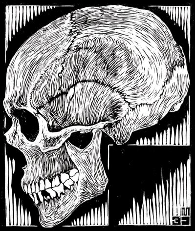 39 skull Escher.png