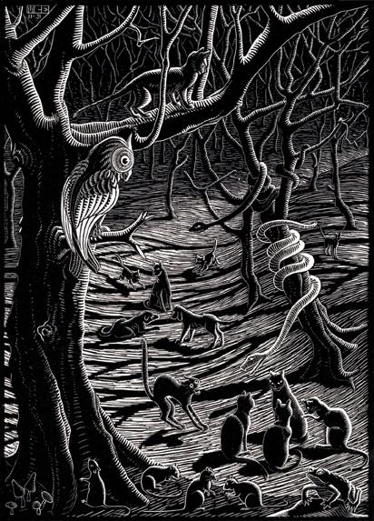 Owl Scene